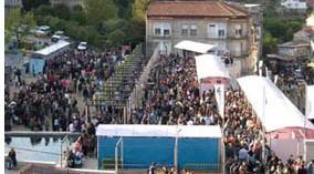 Actividades para todos los públicos en la feria del vino Ribeiro