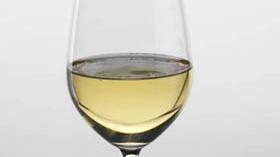 El volumen de las exportaciones españolas de vino disminuye aunque sube el precio de venta
