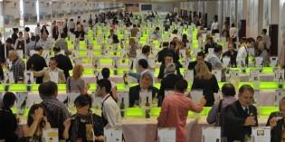 Fenavin 2013, Feria Nacional del Vino