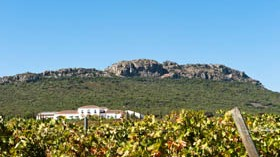 Ribera del Guadiana recibe la certificación oficial de Rutas del Vino de España