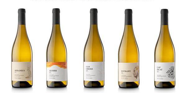 Tecnovino-Celler-Credo-vinos