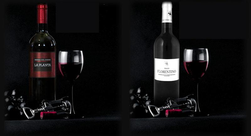 Tecnovino-premios-Arzuaga-Navarro-vinos
