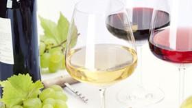 Los vinos españoles y su presencia en los mercados internacionales