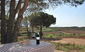 Cata en velero y almuerzo entre viñedos: las propuestas enoturísticas de Castillo Perelada