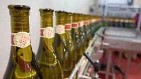 Aromas y albariño, cambio climático y viticultura de precisión y sostenible en una jornada de Martín Códax
