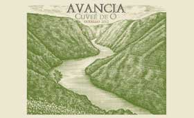 Tecnovino Avancia Cuvee de O Grupo Jorge Ordonez etiqueta