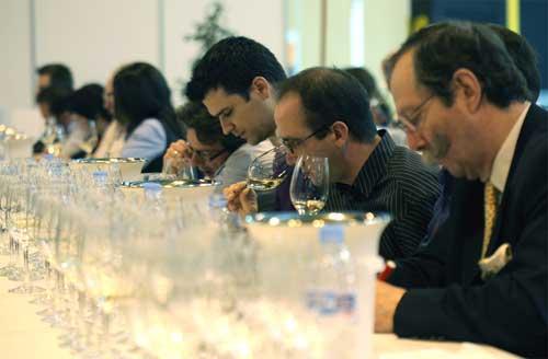 Tecnovino Salon de Gourmets 2013 cata vino