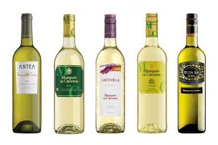 Tecnovino Marques de Caceres proyecto Rueda vinos blancos