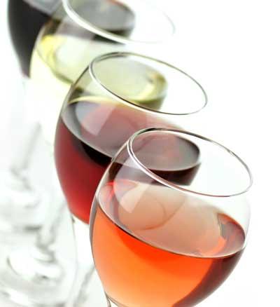 Tecnovino concesion de los dominios wine vin EFOW CECRV