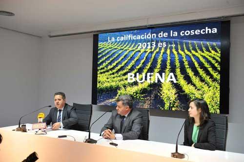 Tecnovino cosecha de Ribera del Duero de 2013