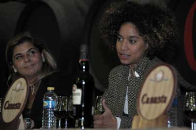 Tecnovino Bodegas Williams and Humbert enouca