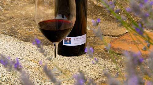 Tecnovino DO Emporda botellas vino vendidas