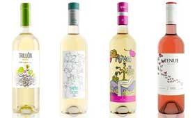 Tecnovino Palacios Vinoteca vinos frescos