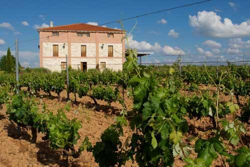 Tecnovino Ribera del Duero 2013 Valtoniar 3