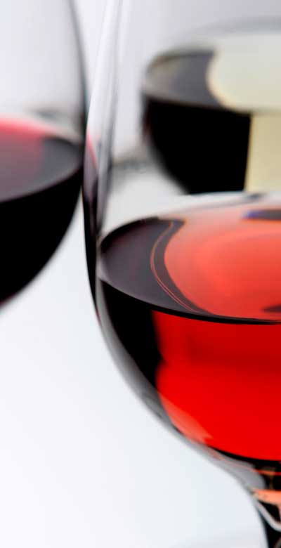 Tecnovino dominios .vin y .wine CE