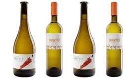 Crece la oferta de Bodegas Veracruz con dos nuevos vinos