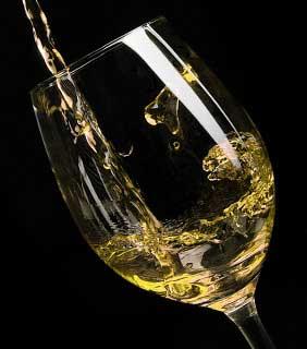 Tecnovino VI Copa Jerez vino