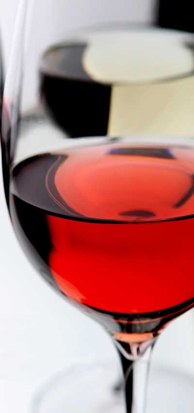 Tecnovino aroma de vinos jovenes