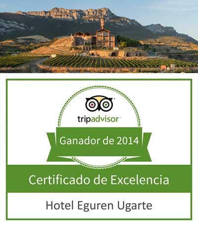 Tecnovino Hotel Eguren Ugarte