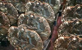 Tecnovino Premios Baco cosecha 2013