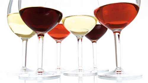 Tecnovino dominios Vin y Wine