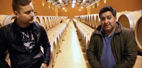 Tecnovino elaboracion del vino del Bierzo Autoctona