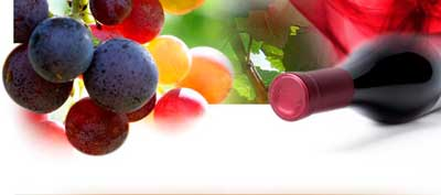 Tecnovino CECRV interprofesional del vino CECRV