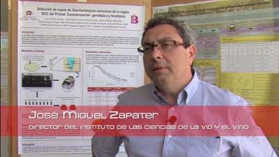 Tecnovino variacion genetica en la vid Martinez Zapater