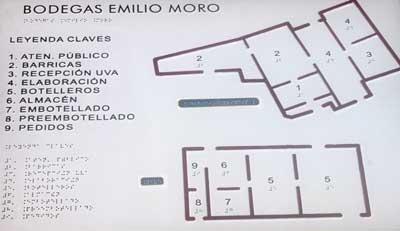 Tecnovino Emilio Moro personas con discapacidad visual 3