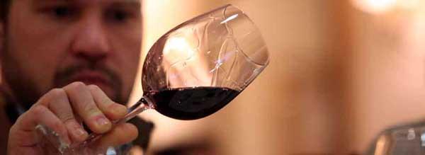 Tecnovino Forum Gastronomic Hostelco vino