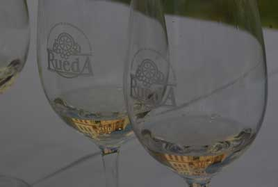 Tecnovino Tu Gran Viaje por la Ruta del Vino de Rueda copas