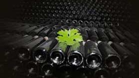 Se aprueban los requisitos para las normas de comercialización del vino