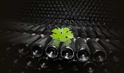 Tecnovino normas de comercializacion del vino