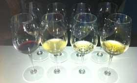 Tecnovino San Sebastian Gastronomika 2014 vino