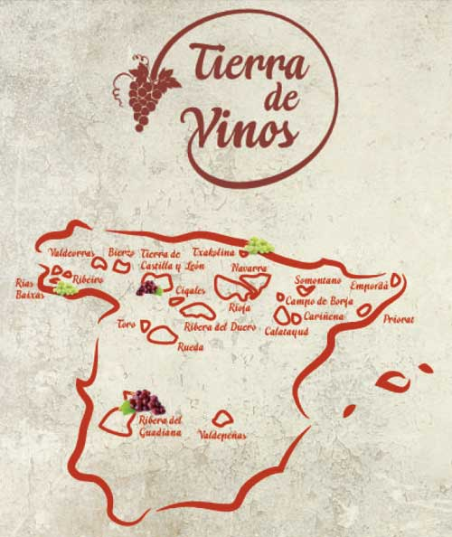 Tecnovino campana de vinos de Lidl 2