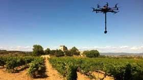 Sobrevolar y adentrarse en los viñedos, la nueva experiencia de Bodegas Torres