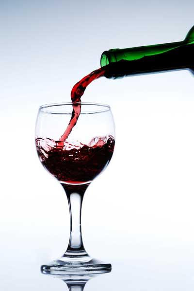 Tecnovino potencial probiotico bacterias lacticas del vino