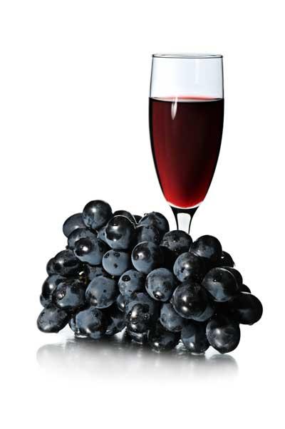 Tecnovino vino tinto molecula obesidad