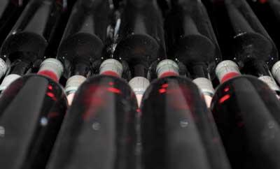Tecnovino produccion de vino Magrama