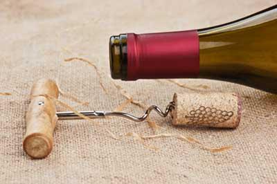 Tecnovino vinos con denominacion de origen hogares oemv
