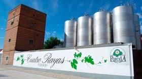 Cuatro Rayas crece al ampliar un 20% sus viñedos