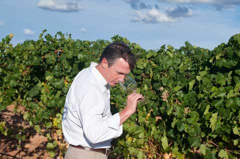 Tecnovino Ruta del Vino de Rueda Munoz Romero