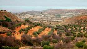 Promueven el lanzamiento internacional de Rutas del Vino de Madrid