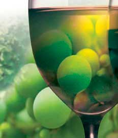 Tecnovino gases alimentarios vino Air Liquide copa