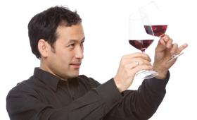 Tecnovino panel de cata oficial de vinos Cataluña