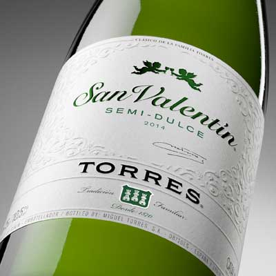 Tecnovino vino San Valentin Bodegas Torres 2