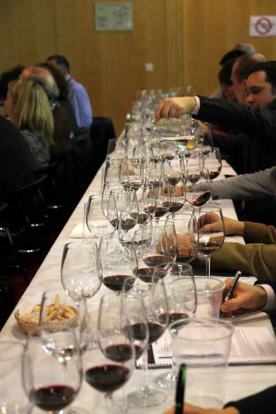 Tecnovino vinos de Bodegas Torres Madrid Fusion Enofusión