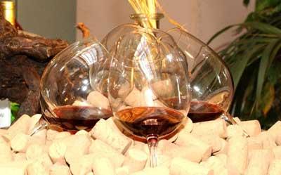 Tecnovino Premio Alimentos de Espana al Mejor Vino 2015 2