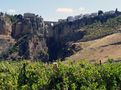 Tecnovino Rutas del Vino Acevin asamblea Ronda