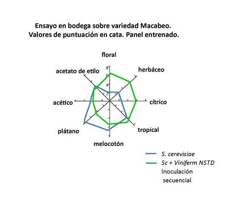 Tecnovino Viniferm NSTD Agrovin grafico